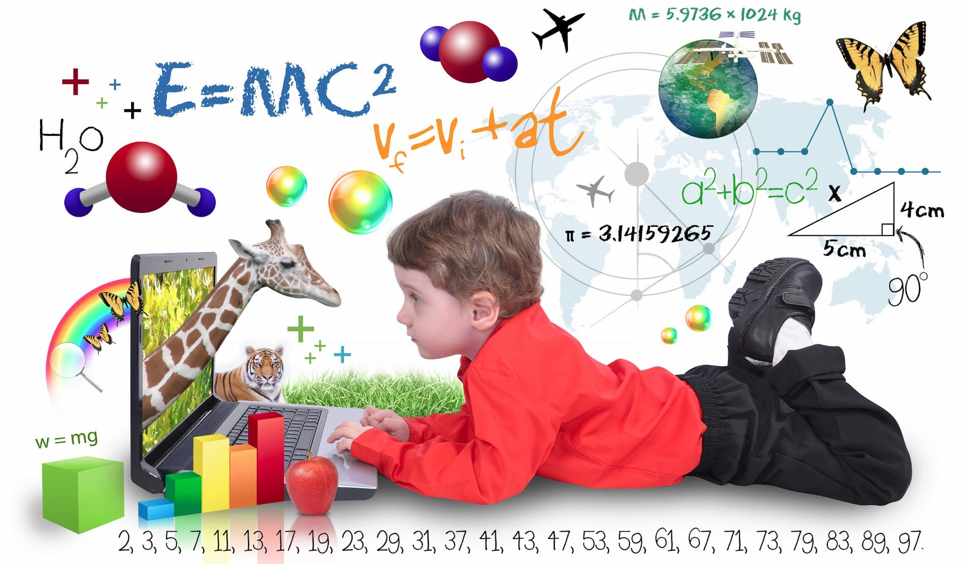 Remote Learning Child
